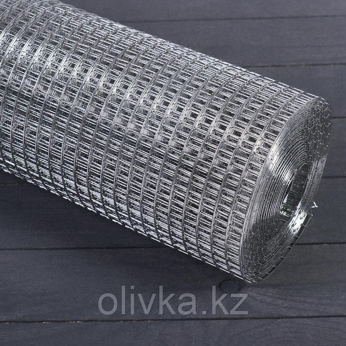 Сетка оцинкованная, сварная, 1,5 × 10 м, ячейка 12,5 × 12,5 мм, d = 1 мм, металл