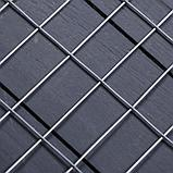 Сетка оцинкованная, сварная 1 × 25 м, ячейка 25 × 50 мм, d = 1 мм, металл, фото 2