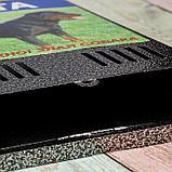 Ящик почтовый без замка (с петлёй), вертикальный, «Фото», МИКС, серебристый, фото 3