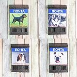 Ящик почтовый без замка (с петлёй), вертикальный, «Фото», МИКС, серебристый, фото 5