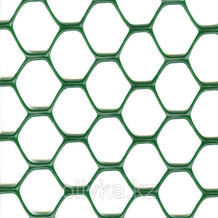 Сетка садовая, 1 × 30 м, ячейка 3 × 3 см, пластик, зелёная, Exagon
