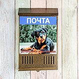 Ящик почтовый без замка (с петлёй), вертикальный, «Фото», МИКС, бронзовый, фото 6
