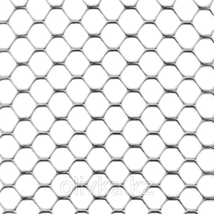 Сетка садовая, 1 × 30 м, ячейка 3 × 3 см, пластик, серебристая, Exagon