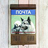 Ящик почтовый без замка (с петлёй), вертикальный, «Фото», МИКС, бронзовый, фото 7