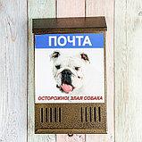 Ящик почтовый без замка (с петлёй), вертикальный, «Фото», МИКС, бронзовый, фото 8
