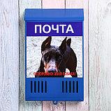 Ящик почтовый без замка (с петлёй), вертикальный, «Фото», МИКС, синий, фото 2