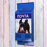 Ящик почтовый без замка (с петлёй), вертикальный, «Фото», МИКС, синий, фото 3