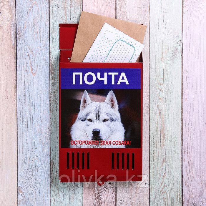 Ящик почтовый без замка (с петлёй), вертикальный, «Фото», МИКС, красный