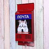 Ящик почтовый без замка (с петлёй), вертикальный, «Фото», МИКС, красный, фото 3