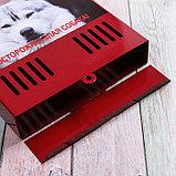 Ящик почтовый без замка (с петлёй), вертикальный, «Фото», МИКС, красный, фото 4