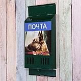 Ящик почтовый без замка (с петлёй), вертикальный, «Фото», МИКС, зелёный, фото 3