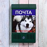 Ящик почтовый с замком, вертикальный, «Фото», МИКС, зелёный, фото 2