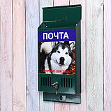 Ящик почтовый с замком, вертикальный, «Фото», МИКС, зелёный, фото 3