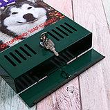 Ящик почтовый с замком, вертикальный, «Фото», МИКС, зелёный, фото 4