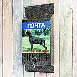 Ящик почтовый с замком, вертикальный, «Фото», МИКС, серебристый, фото 3