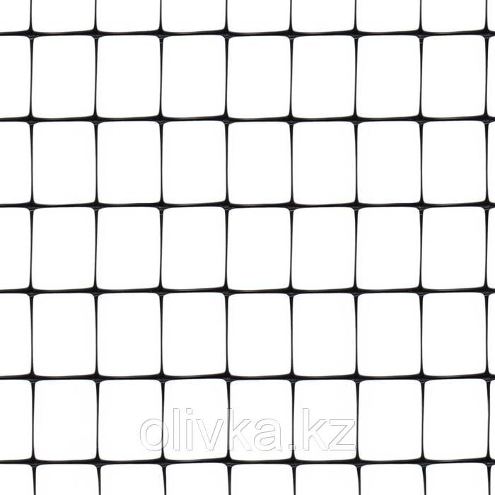 Сетка садовая, 4 × 200 м, ячейка 1,6 × 1,9 см, пластик, AVIARY