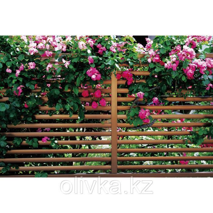 Фотобаннер, 250 × 150 см, с фотопечатью, люверсы шаг 1 м, «Полоса»