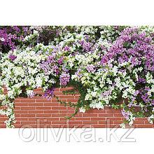 Фотобаннер, 250 × 150 см, с фотопечатью, люверсы шаг 1 м, «Весенние цветы»
