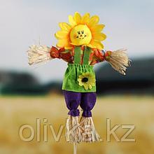 Огородное пугало «Солнце», h = 50 см, МИКС