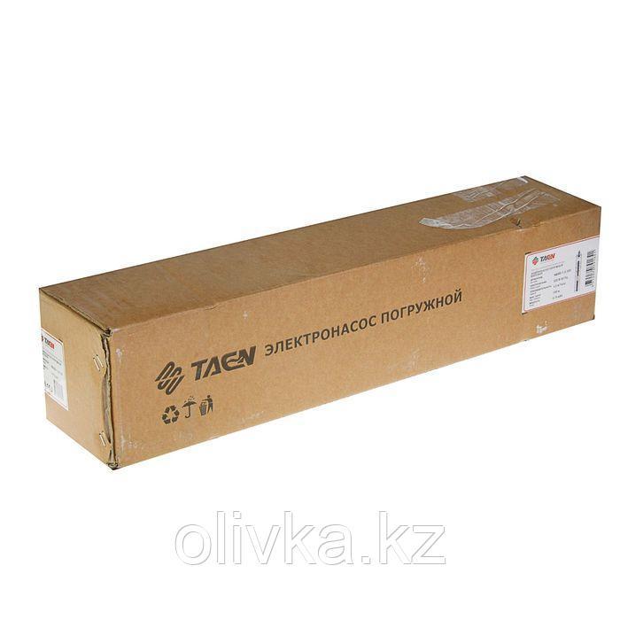 Насос скважинный TAEN 4QGD/1.2-100, винтовой, 750 Вт, напор 100 м, 30 л/мин, кабель 12 м - фото 2