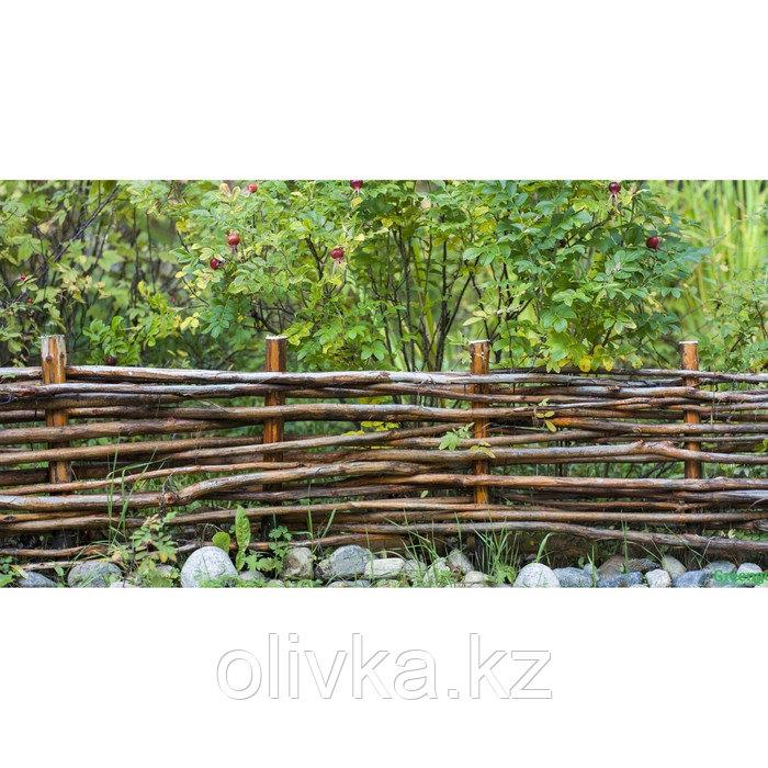 Фотобаннер, 300 × 160 см, с фотопечатью, люверсы шаг 1 м, «Плетёнка»