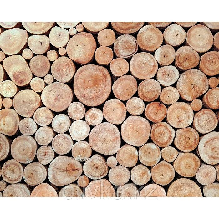 Фотобаннер, 300 × 160 см, с фотопечатью, люверсы шаг 1 м, «Поленница»