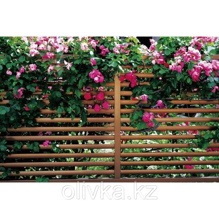 Фотобаннер, 250 × 200 см, с фотопечатью, люверсы шаг 1 м, «Полоса»
