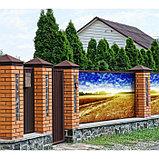 Фотобаннер, 250 × 200 см, с фотопечатью, люверсы шаг 1 м, «Рожь», фото 2