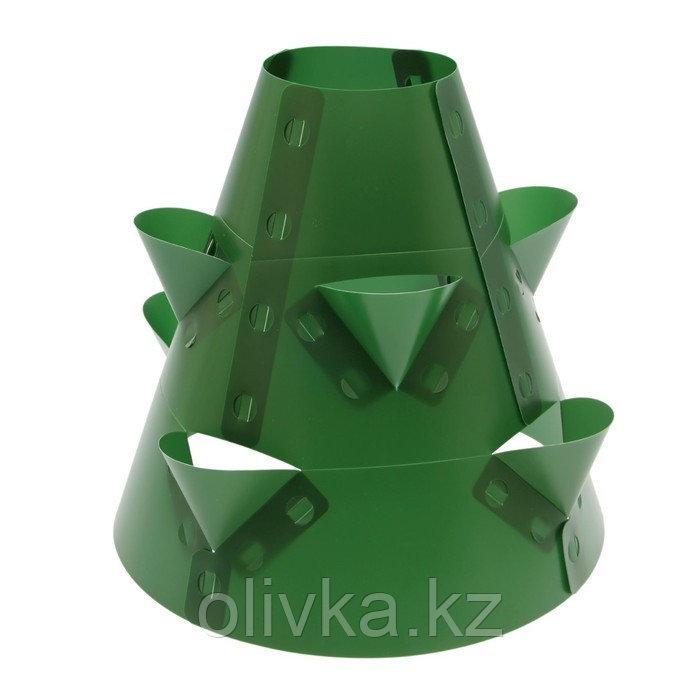 Клумба конусная, d = 20–60 см, h = 60 см, зелёная
