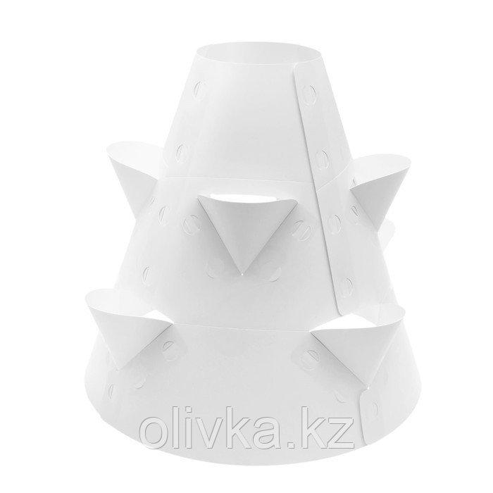 Клумба конусная, d = 20–60 см, h = 60 см, белая