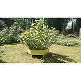 Клумба оцинкованная, d = 100 см, h = 15 см, жёлтая, Greengo, фото 3