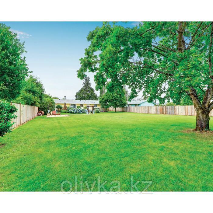 Фотобаннер, 250 × 200 см, с фотопечатью, люверсы шаг 1 м, «Зелёная поляна»