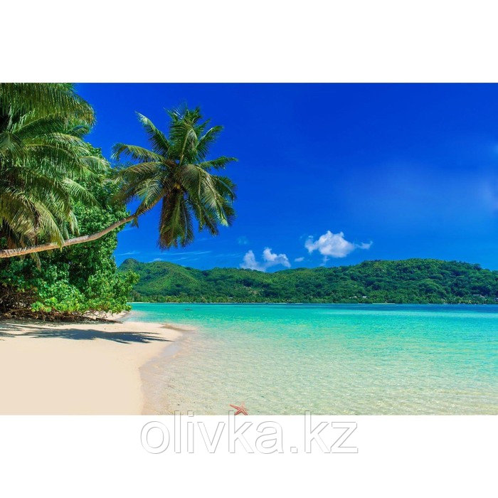 Фотобаннер, 300 × 200 см, с фотопечатью, люверсы шаг 1 м, «Пляж»