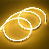 Neon flex, гибкий флекс неон, гибкий неон, холодный неон, уличный неон, неоновый шнур, фото 2