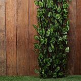 Ограждение декоративное, 200 × 75 см, «Лист осины», Greengo, фото 4