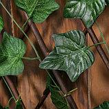 Ограждение декоративное, 200 × 75 см, «Лист клёна», Greengo, фото 2
