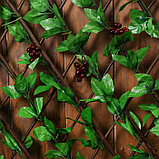 Ограждение декоративное, 200 × 75 см, «Виноград», Greengo, фото 2