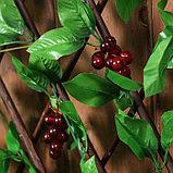 Ограждение декоративное, 200 × 75 см, «Виноград», Greengo, фото 3