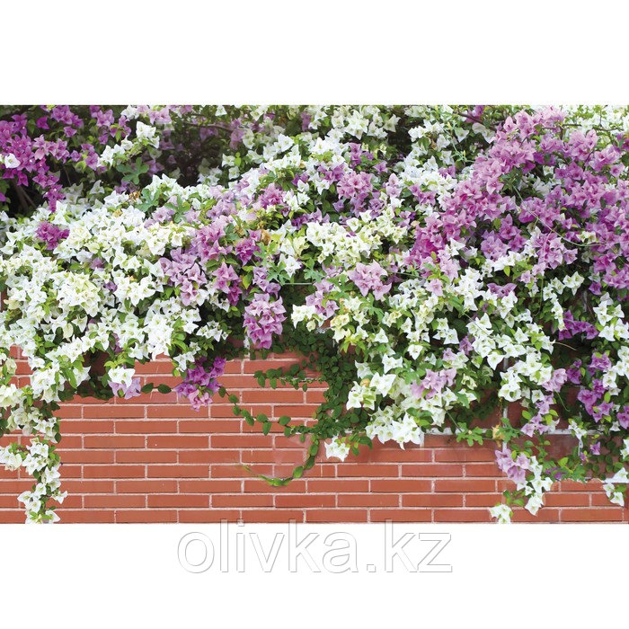Фотобаннер, 300 × 200 см, с фотопечатью, люверсы шаг 1 м, «Весенние цветы»