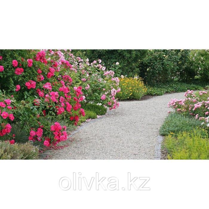Фотобаннер, 300 × 200 см, с фотопечатью, люверсы шаг 1 м, «Сад»
