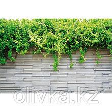 Фотобаннер, 300 × 200 см, с фотопечатью, люверсы шаг 1 м, «Серая стена»