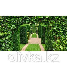Фотобаннер, 300 × 200 см, с фотопечатью, люверсы шаг 1 м, «Лабиринт»