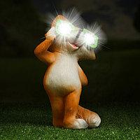 """Садовый светильник """"Лисичка в очках"""" на солнечной батарее, 19,5 см"""