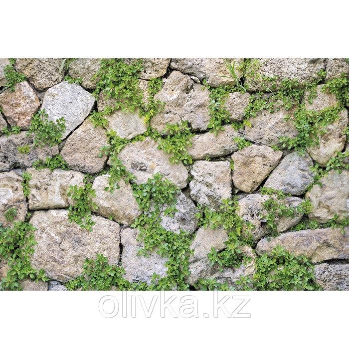 Фотобаннер, 300 × 200 см, с фотопечатью, люверсы шаг 1 м, «Каменная стена»