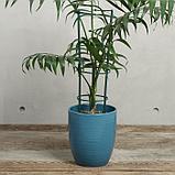 Поддержка для растений, h = 40,5 см, цвет МИКС, фото 3