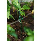 Колышек для подвязки растений, h = 80 см, d = 0.3 см, проволочный, зелёный, фото 2