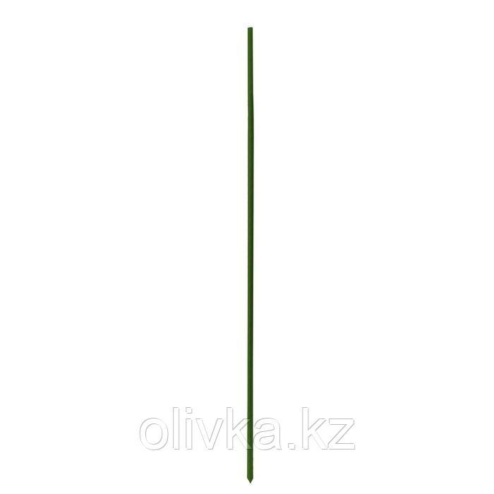 Опора для растений, h = 90 см, металл в пластике