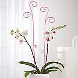 Держатель для орхидеи h=60, цвет МИКС, фото 4