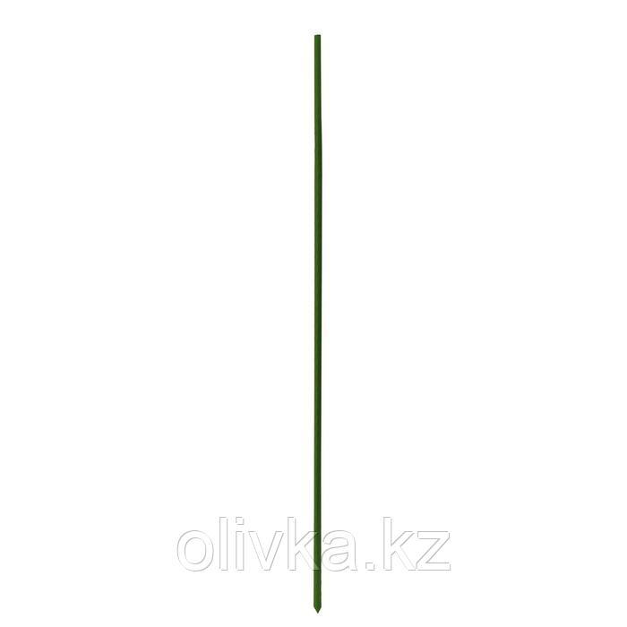 Опора для растений, h = 120 см, металл в пластике