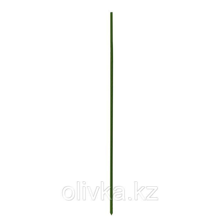 Опора для растений, h = 150 см, металл в пластике